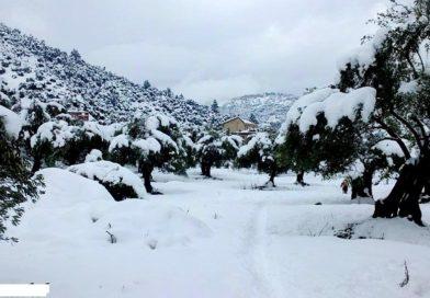 Météo : de la pluie et de la neige jusqu'à mardi